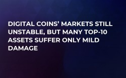 Digital Coins' Markets Still Unstable, But Many Top-10 Assets Suffer Only Mild Damage