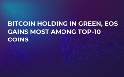Bitcoin Holding in Green, EOS Gains Most Among Top-10 Coins
