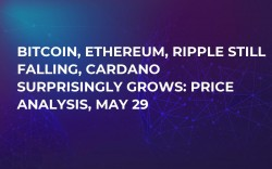 Bitcoin, Ethereum, Ripple Still Falling, Cardano Surprisingly Grows: Price Analysis, May 29