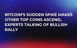 Bitcoin's Sudden Spike Makes Other Top Coins Ascend, Experts Talking of Bullish Rally