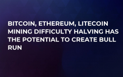 Bitcoin, Ethereum, Litecoin Mining Difficulty Halving Has the Potential to Create Bull Run
