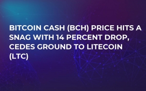 Bitcoin Cash (BCH) Price Hits a Snag with 14 Percent Drop, Cedes Ground to Litecoin (LTC)