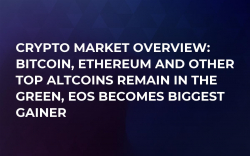Crypto Market Overview: Bitcoin, Ethereum and Other Top Altcoins Remain in the Green, EOS Becomes Biggest Gainer