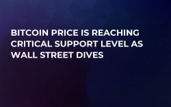 Bitcoin Price is Reaching Critical Support Level As Wall Street Dives