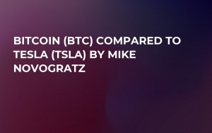 Bitcoin (BTC) Compared to Tesla(TSLA) by Mike Novogratz