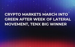 Crypto Markets March Into Green After Week of Lateral Movement, TenX Big Winner
