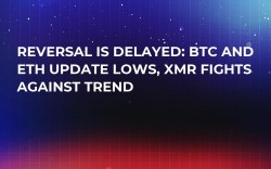 Reversal is Delayed: BTC and ETH Update Lows, XMR Fights Against Trend