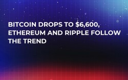 Bitcoin Drops to $6,600, Ethereum and Ripple Follow the Trend