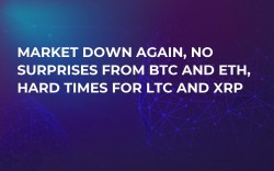 Market Down Again, No Surprises from BTC and ETH, Hard Times for LTC and XRP
