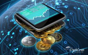 CryptoTips: Types of Development Funding