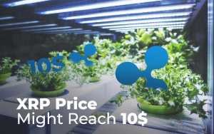 Every Ripple Price Prediction 2019 Says the Same Thing: XRP Price Might Reach 10$