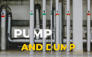 What is Crypto Pump and Dump: Simply Explained For Beginners