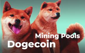 Dogecoin Mining Pools - Is It Worth It?
