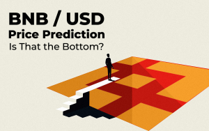 BNB/USD Price Prediction — The Price Plummeted Below $20: Is That the Bottom or Not?
