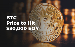 Bitcoin (BTC) Price to Hit $30,000 EOY: Kenetic Co-Founder