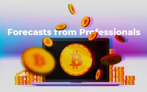 Bitcoin Fiyat Tahmini 2018-10 Profesyonellerden Tahminler