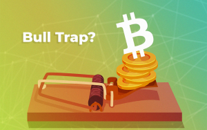 Bitcoin Price Halts Its Rally — Is $10,000 Next or Is This a Bull Trap Back Below $6,000?