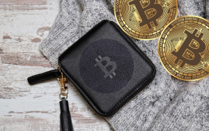 This Bitcoin Wallet Will Set You Back $50,000
