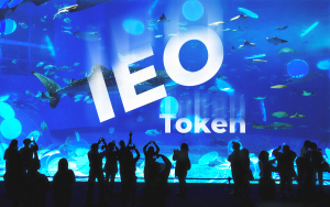 IEO Token Explanation on Brave Sound Token Example