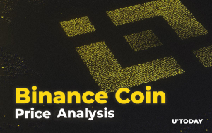 Binance Coin Price Analysis 2019-20-25 — How Much Might BNB Cost?