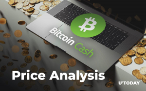 Bitcoin Cash Price Analysis — How Much Might BCH Cost in 2019, 2020, and 2025?