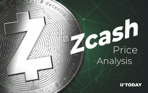 Zcash Price Analysis — How Much Might ZEC Cost in 2019-20-25?