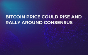 Bitcoin Price Could Rise and Rally Around Consensus