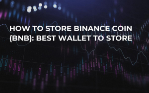 How to store Binance Coin (BNB): Best Wallet to Store