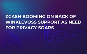 Zcash Booming on Back of Winklevoss Support as Need For Privacy Soars