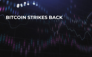Bitcoin Strikes Back