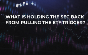 What is Holding the SEC Back From Pulling the ETF Trigger?