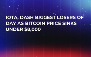 IOTA, DASH Biggest Losers of Day As Bitcoin Price Sinks Under $8,000