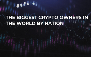 The Biggest Crypto Owners in the World by Nation