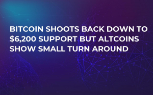 Bitcoin Shoots Back Down to $6,200 Support But Altcoins Show Small Turn Around