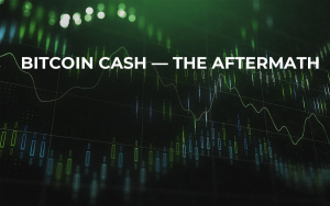 Bitcoin Cash — The Aftermath