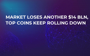 Market Loses Another $14 Bln, Top Coins Keep Rolling Down