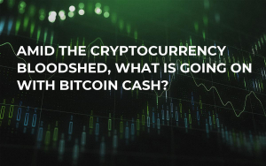 Amid the Cryptocurrency Bloodshed, What is Going on With Bitcoin Cash?