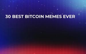 30 Best Bitcoin Memes Ever