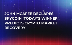 John McAfee Declares Skycoin 'Today's Winner', Predicts Crypto Market Recovery