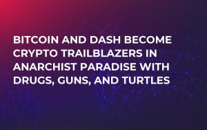 Bitcoin and Dash Become Crypto Trailblazers in Anarchist Paradise with Drugs, Guns, and Turtles