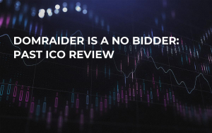 DomRaider is a no Bidder: Past ICO Review