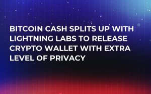 Bitcoin Cash Splits Up with Lightning Labs to Release Crypto Wallet with Extra Level of Privacy