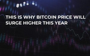 This Is Why Bitcoin Price Will Surge Higher This Year