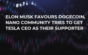 Elon Musk Favours Dogecoin, NANO Community Tries to Get Tesla CEO as Their Supporter
