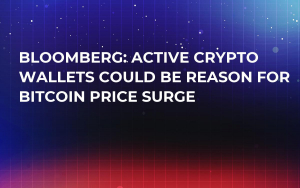 Bloomberg: Active Crypto Wallets Could Be Reason for Bitcoin Price Surge