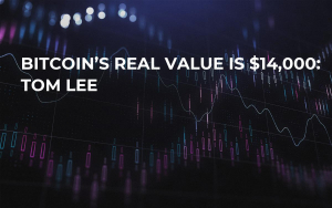 Bitcoin's Real Value Is $14,000: Tom Lee