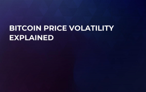 Bitcoin Price Volatility Explained