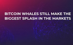 Bitcoin Whales Still Make the Biggest Splash in the Markets