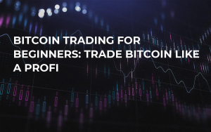 Bitcoin Trading For Beginners: Trade Bitcoin Like a Profi