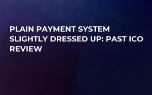 Plain Payment System Slightly Dressed Up: Past ICO Review